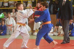 Jedino zlato - Anton Skoko, plavi (Danilo MEMEDOVIĆ)