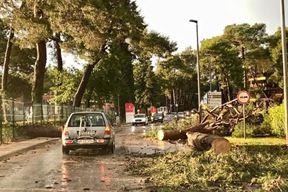 Nevrijeme je nanijelo velike štete u Umagu (Alan Paradinović / Istramet)