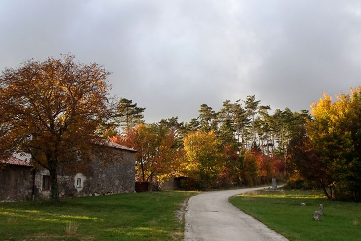 Jesen na Ćićariji (Snimio Enes Seferagić Enki)