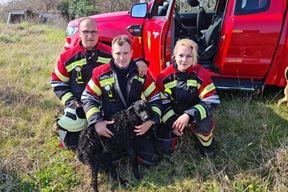Vatrogasci Umaga spasili psa