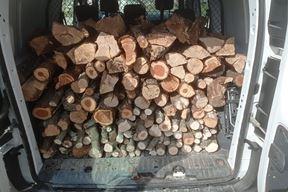 Građani su donirali drva za ogrjev (Foto: Istra pomaže Facebook)