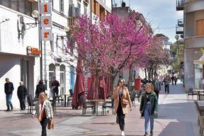 Najfrekventnija pješačka zona u Puli - Flanatička ulica (Snimio Duško Marušić Čiči)