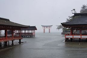 Crveni torii - vrata prijelaza iz svakidašnjeg u sveto