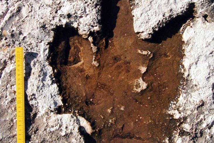 Otisci dinosaurovih stopala u kamenu