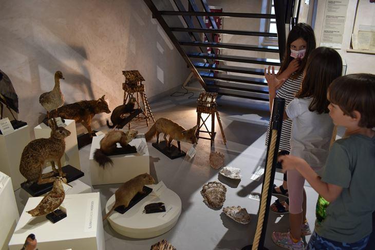 (Foto: Muzej grada Umaga)