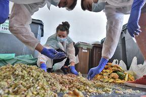 Studenti analiziraju otpad od hrane (Snimio Duško Marušić Čiči)